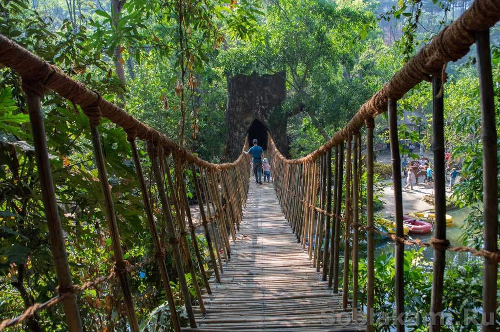 Окрестности Далата: ловля крокодилов, водопады, слоны и монахи