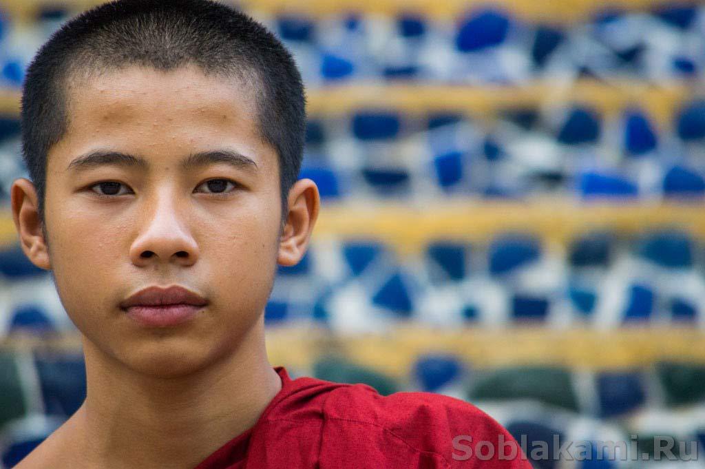 10 фактов о буддистских монахах во Вьетнаме