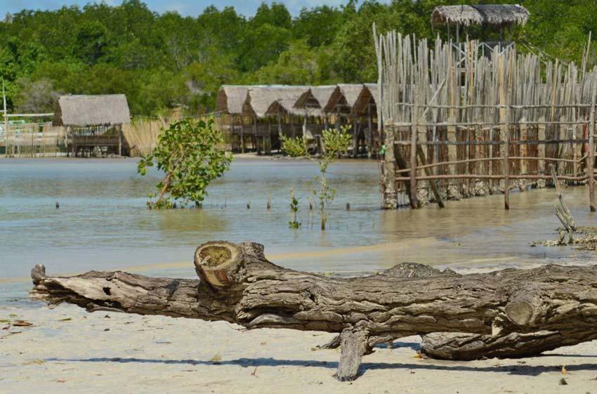 Остров Палаван: фото - 6